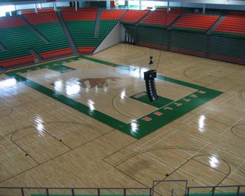 Multipurpose Gymnasium Flooring