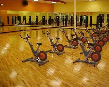 fitness studio flooring synthetic fitness studio flooring by connor