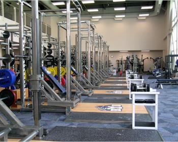 Strength Training Platforms