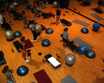Synthetic Fitness Flooring