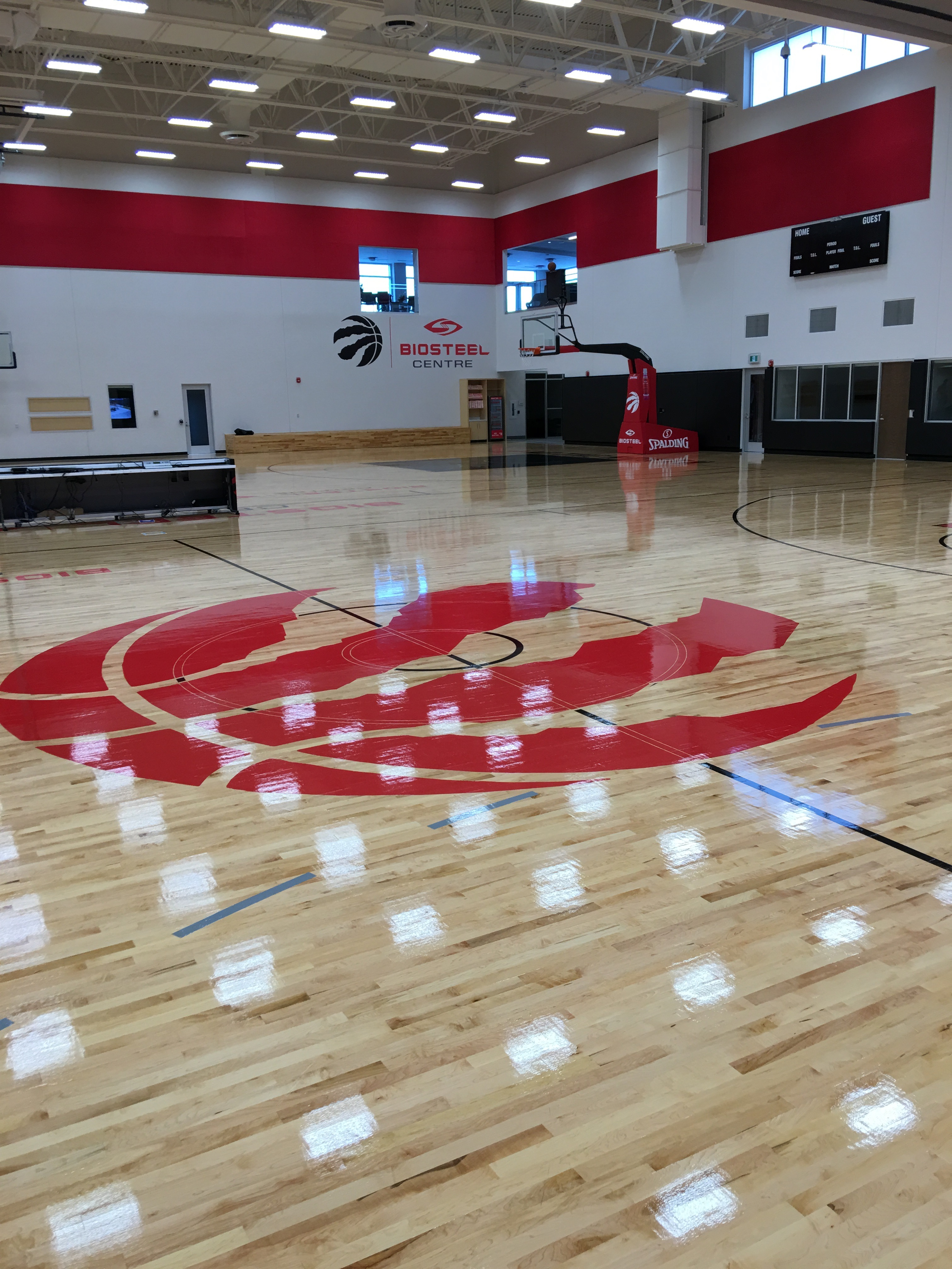 Toronto Raptors Connor Sports Basketball Court