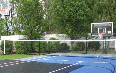 Basketball Backyard-court Multi-sport Volleyball Family Sport Outdoor
