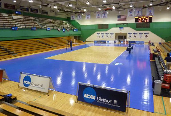 Volleyball Gymnasium Facility Sport Event Indoor