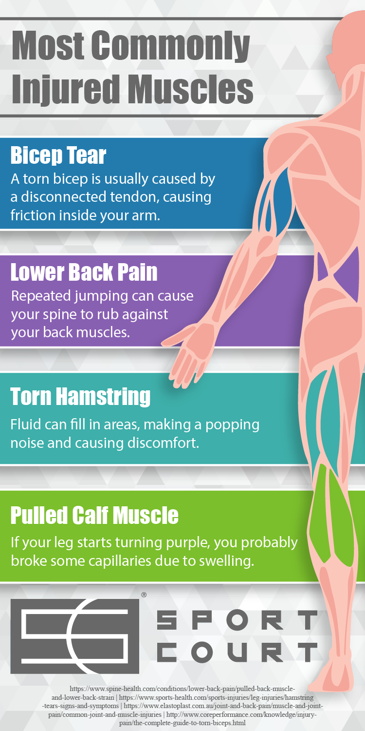 Most Commonly Injured Muscles
