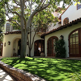 Florida Backyard Artificial Grass
