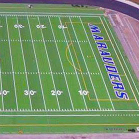 Synthetic Turf for Hawaii