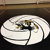 Customized Commercial Basketball Sport Court