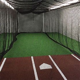 Synthetic Grass Home Gym Batting Cages