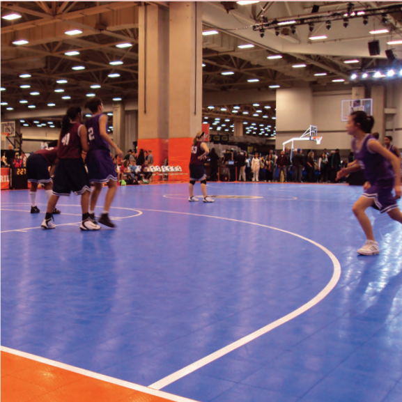 Commercial Indoor Multi-use Court Builders