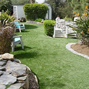 Backyard Turf