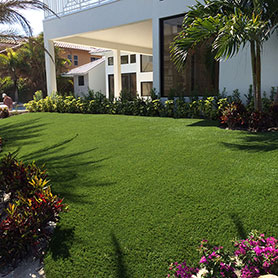 Florida Outdoor Synthetic Grass