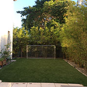 Florida Backyard Turf