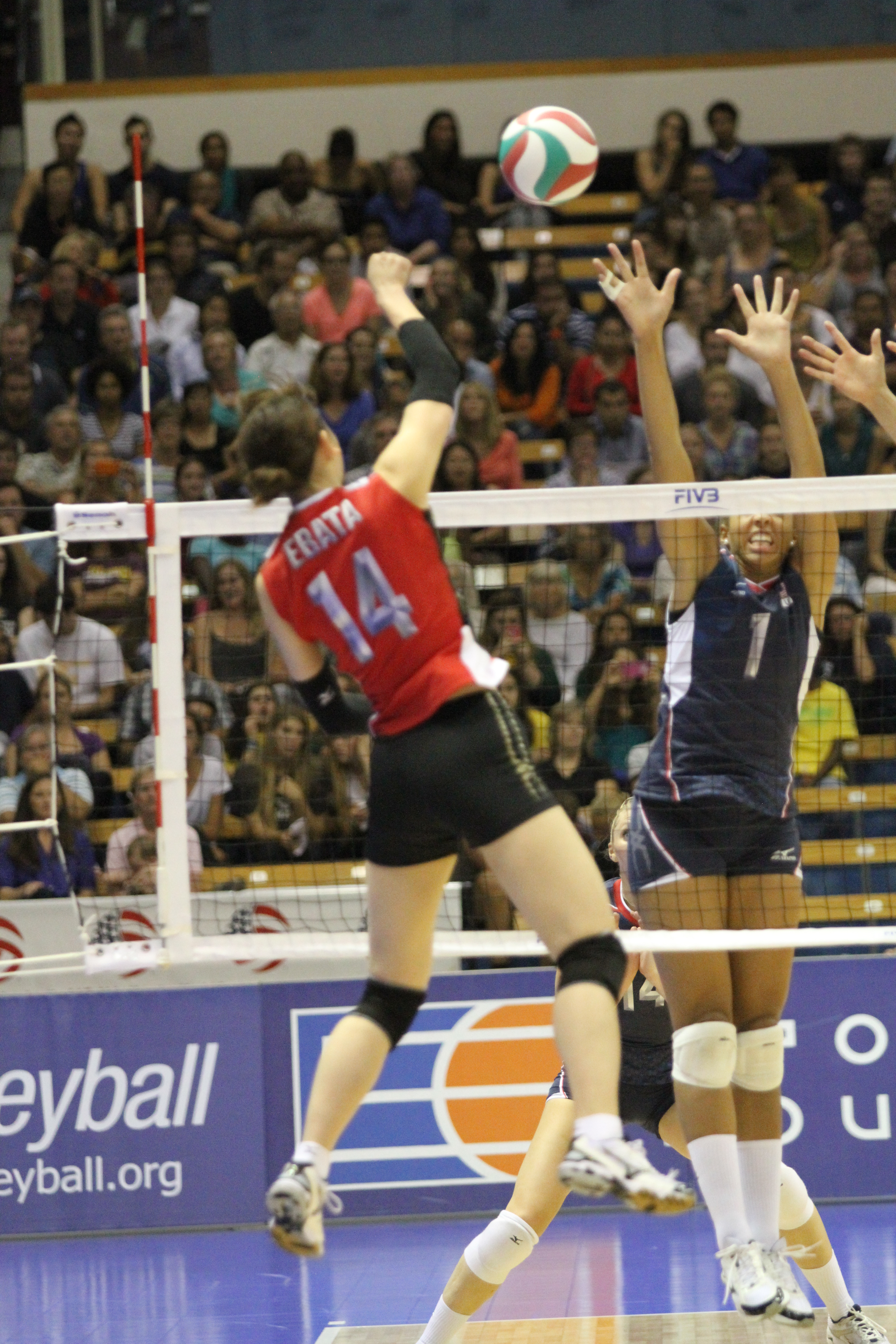 USA Volleyball Player