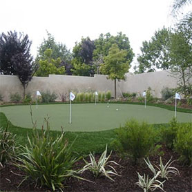 Synthetic Grass Backyard Putting Greens