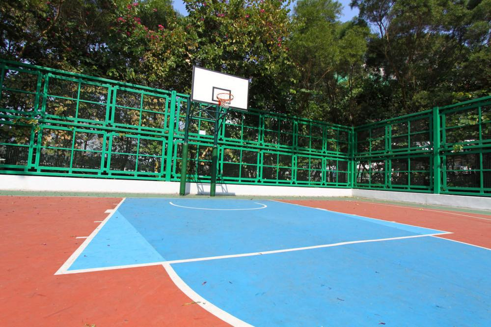 Design Your Own Basketball Court – Right Color Selection